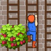 Сходи і квіти
