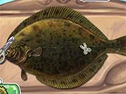 Готувати їжу рибу