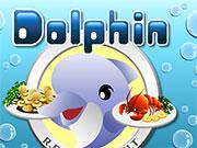 Дельфіни готують їжу