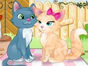 Кішки 2