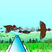 Полювання на качок