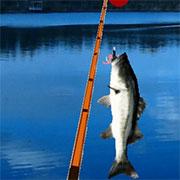 Рибалка на щуку