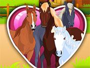 Догляд за кіньми