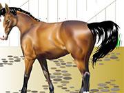 Пригода диких коней