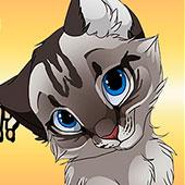 Симулятор котів