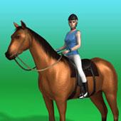 Перегони на конях
