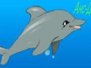 Дельфіни шоу 4
