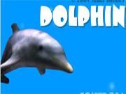 Дельфіни шоу 100