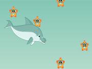 Бродилки дельфіни