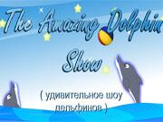 Дивовижне шоу дельфінів