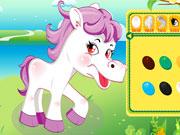 Маленька конячка поні