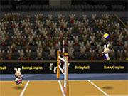 Кроленята грають у волейбол